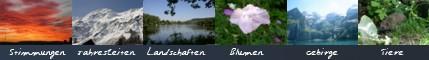 Wir bieten jede Menge Natur-Wallpaper in den Bereichen Gebirge/Winter, Blumen, Sonne/Wolken, Landschaften und Tiere an.